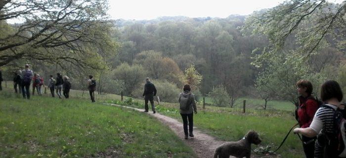 Duivelsberg stiltewandeling Walk of Wisdom