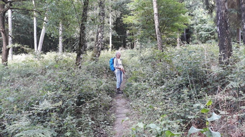 Bramen snoeien, pelgrimsroute Walk of Wisdom Reichswald