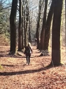 Pelgrimsroute Walk of Wisdom