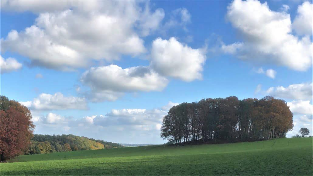 Landgoed Holthurnse Hof, Walk of Wisdom